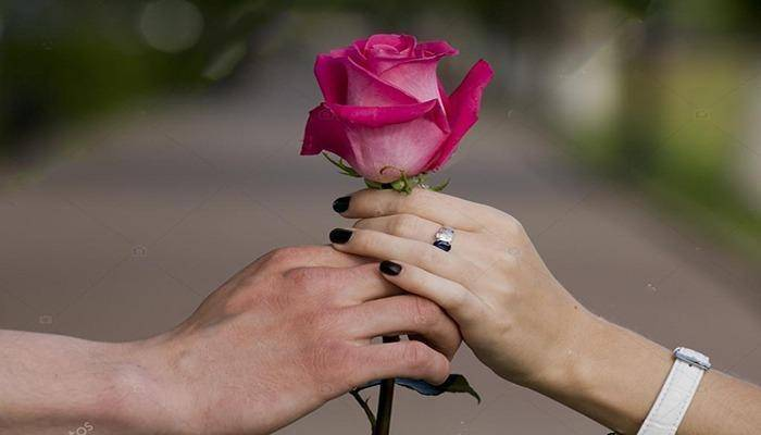 close up two hands holding a flower