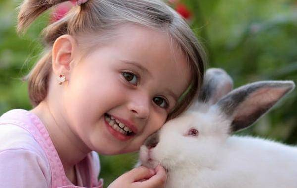 girl-rabbit-friendship-love-