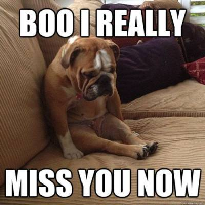 Boo I miss you-long distance relationship memes