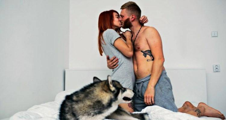 couple-in-bed-with-dog