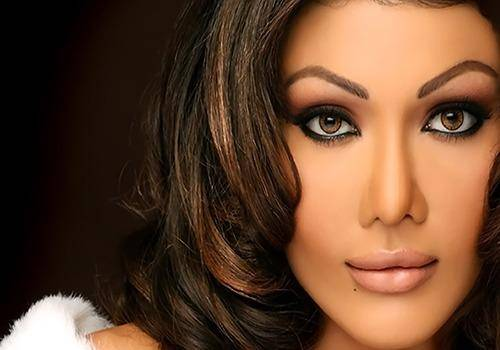 Bollywood actresses quit acting due to many reasons. Koena Mitra did it for a nose job gone wrong