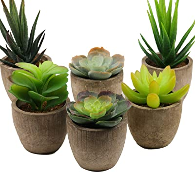Supla Assorted Potted Artificial Succulents Plants