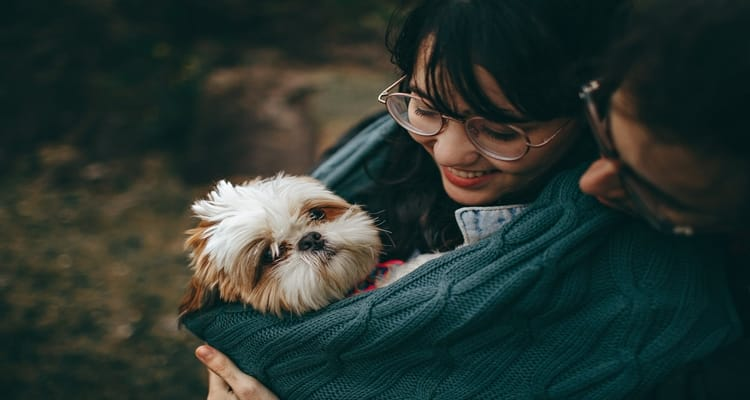 Pets and dating